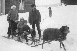 Denna bild från hembygdsföreningens samlingar på Bygdeband visar Gut/Pilt Carl Andersson (1868-1931) med några av sina barn och Pilt-gumsen vid juletid omkring 1915